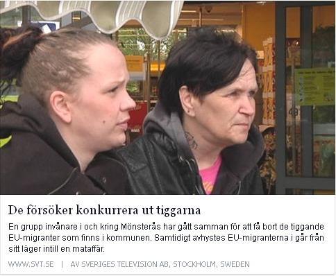 Klicka här för att gå till artikeln i SVT, 2015-05-06