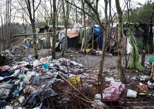 EU-migranter skräpar ner