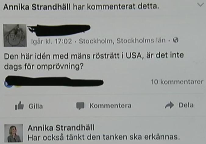 Annika Strandhäll och mäns rösträtt