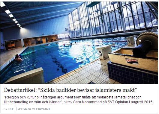 Klicka här för att gå till artikeln i SVT, 2015-08-02