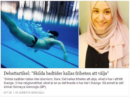 Klicka här för att gå till artikeln i SVT, 2015-08-04
