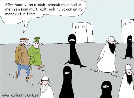 Mångkultur i Sverige