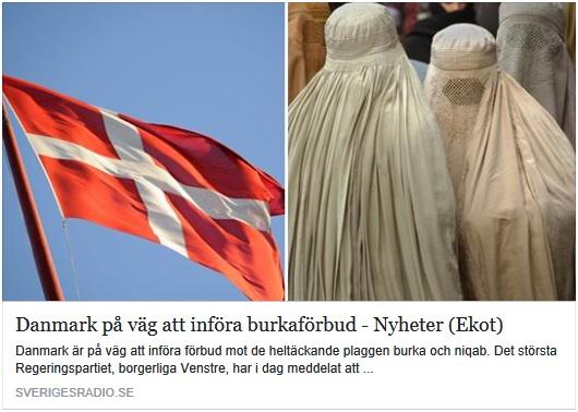 Slöjförbud i Danmark