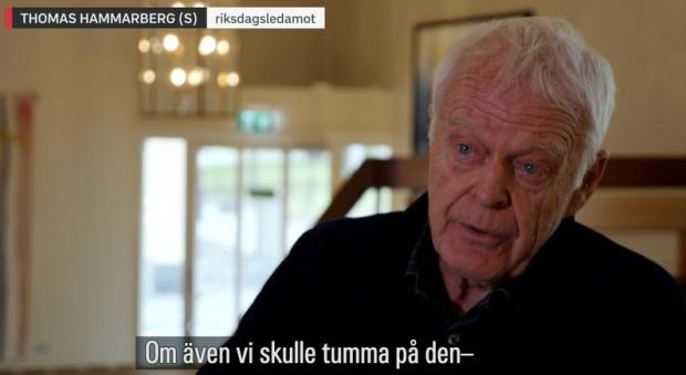 Thomas Hammarberg, Socialdemokraterna
