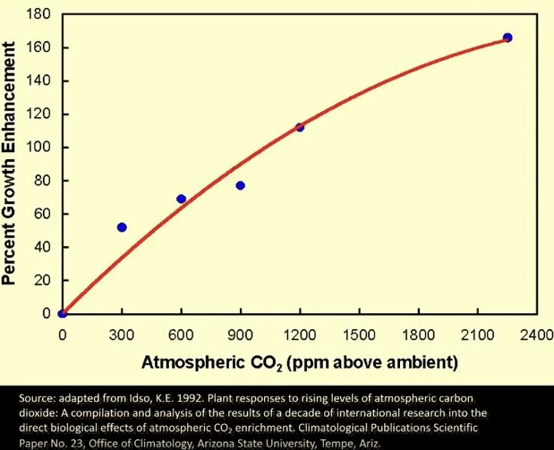 Om koldioxid tillförs atmosfären växer växter bättre