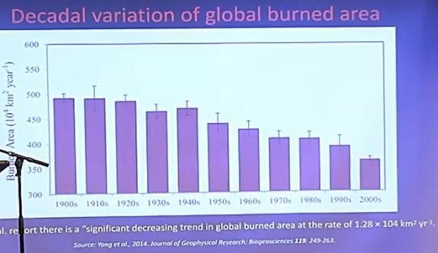 Globalt bränd area per decennium