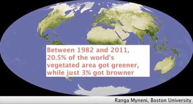 Mellan 1982 och 2011 (29 år) blev 20,5% av världens område med vegetation grönare medan endast 3% blev brunare. Tack vare koldioxiden