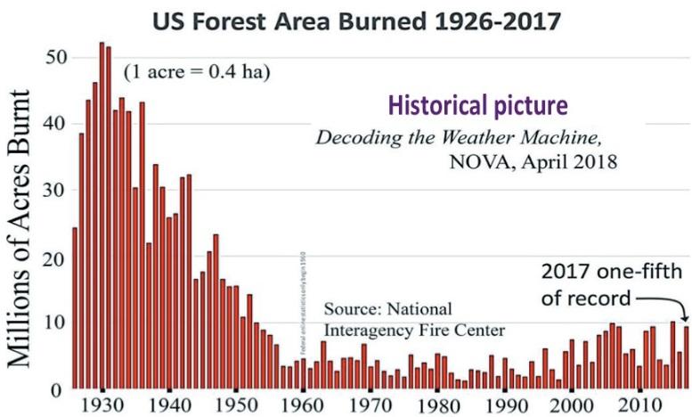 Skogsarea som bränts i USA mellan 1926 och 2017. Statistik visar inte att naturkatastrofer ökar. Här visas ett exempel på skogsbränder. Som vi sett med temperaturprognoserna är katastrofsprognoser långt ifrån verkligheten. Kontentan är: Det finns ingen klimatnödsituation