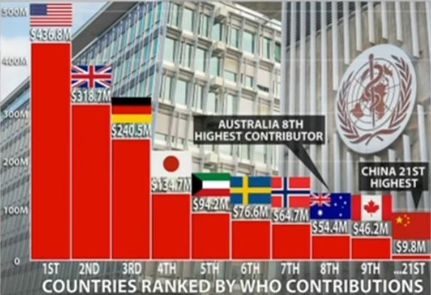 De största bidragsgivarna till WHO är USA, Storbritannien, Tyskland, Japan, Kuwait och Sverige