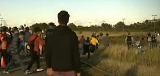Migranter flyr från tågstationen i Danmark för att inte bli tagna av polisen så att de inte kan ta sig vidare till Sverige