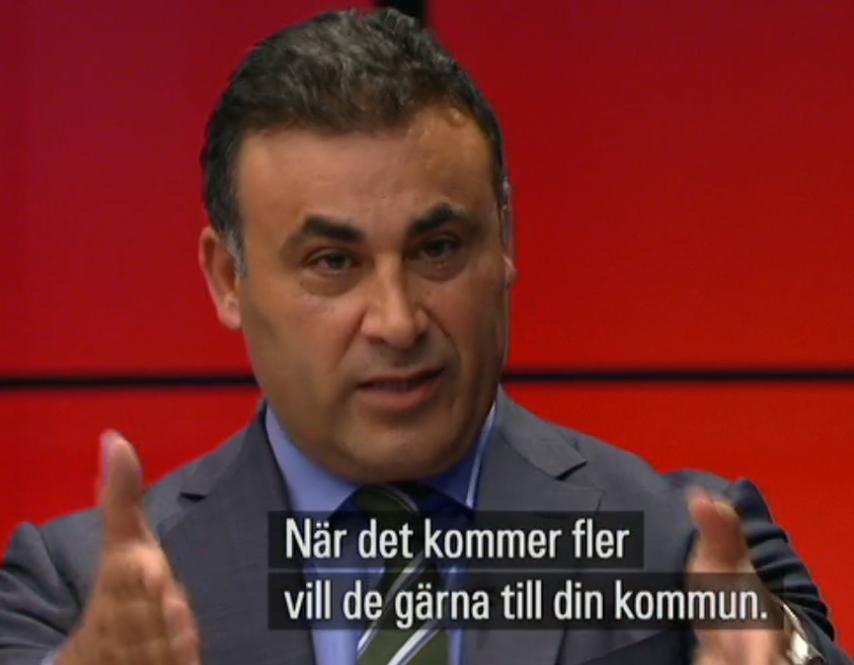 Naser Khader, Danmark