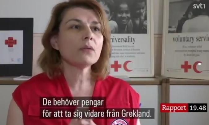 Röda korset vill ha fler migranter