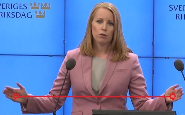 Annie Lööfs ytterkantspartier