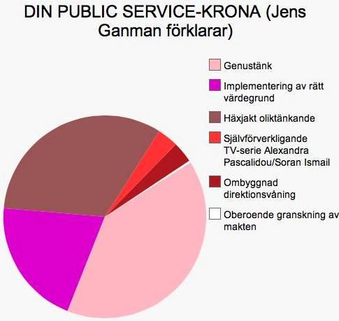 Vad går avgiften för Public Service till?