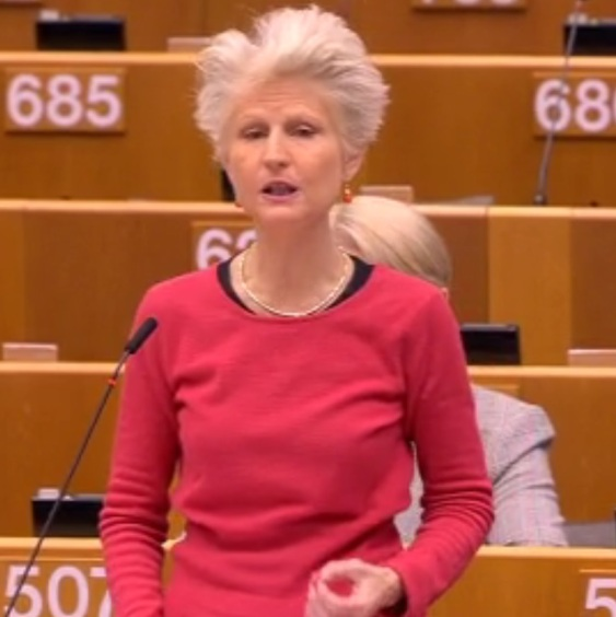 Anna Maria Corazza Bildt, FN:s Global Compact for Safe, Orderly and Regular Migration