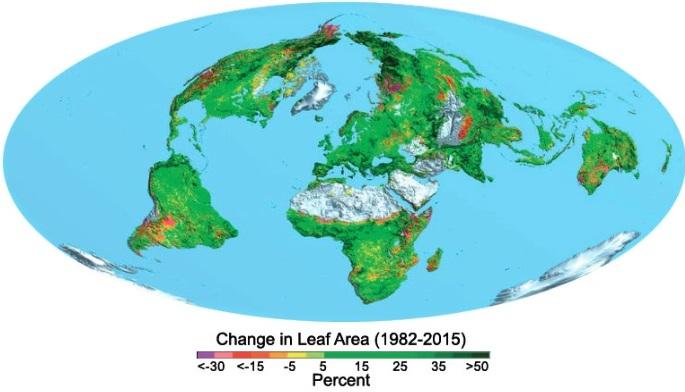 Med hjälp av att mer koldioxid i atmosfären främjas tillväxt av växter, måste jorden grönare.